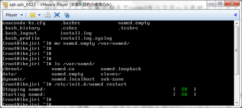 DNSサーバ構築中…